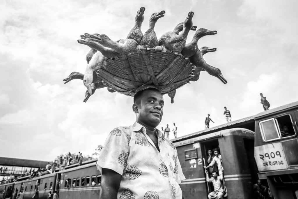 IAAP Gold Medal - Md. Nazmul Hasan Khan (Australia) - The Duck Seller